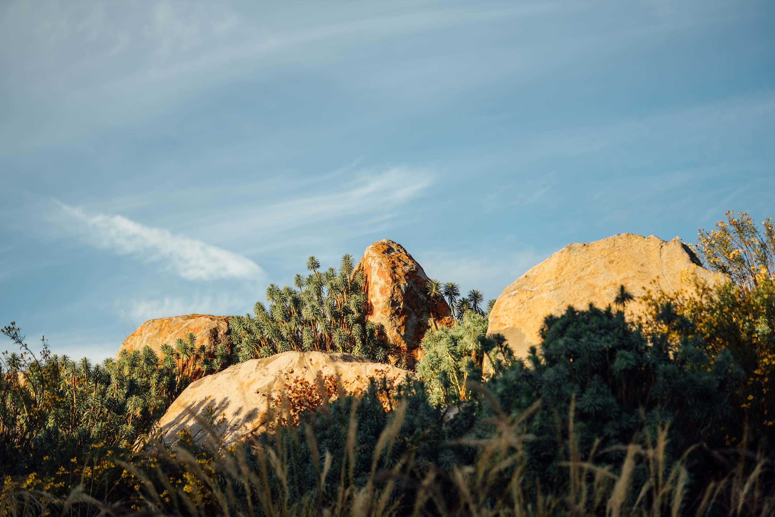 Rocky terrain at OVID