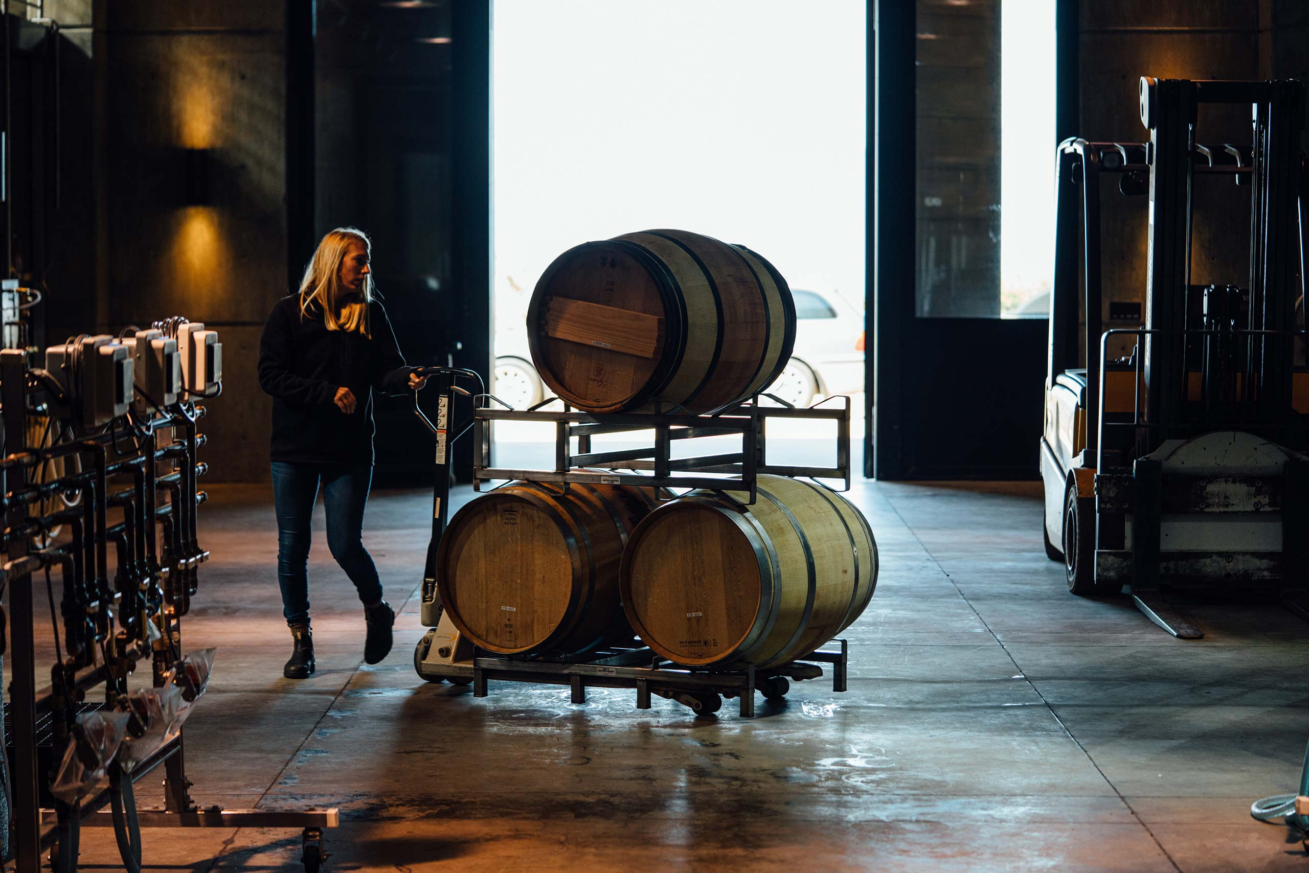 Laura moving barrels in the cellar
