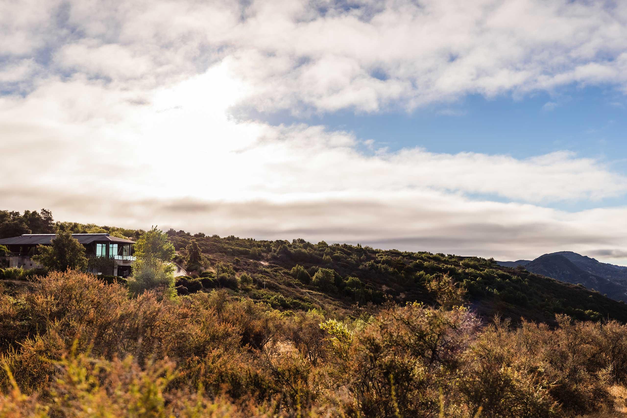 Winery exterior hillside